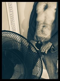 here's one of my fans ;)